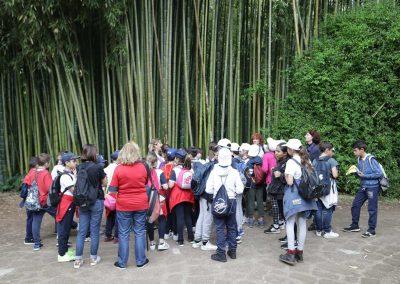 Green Camp - Giardini di Ninfa16