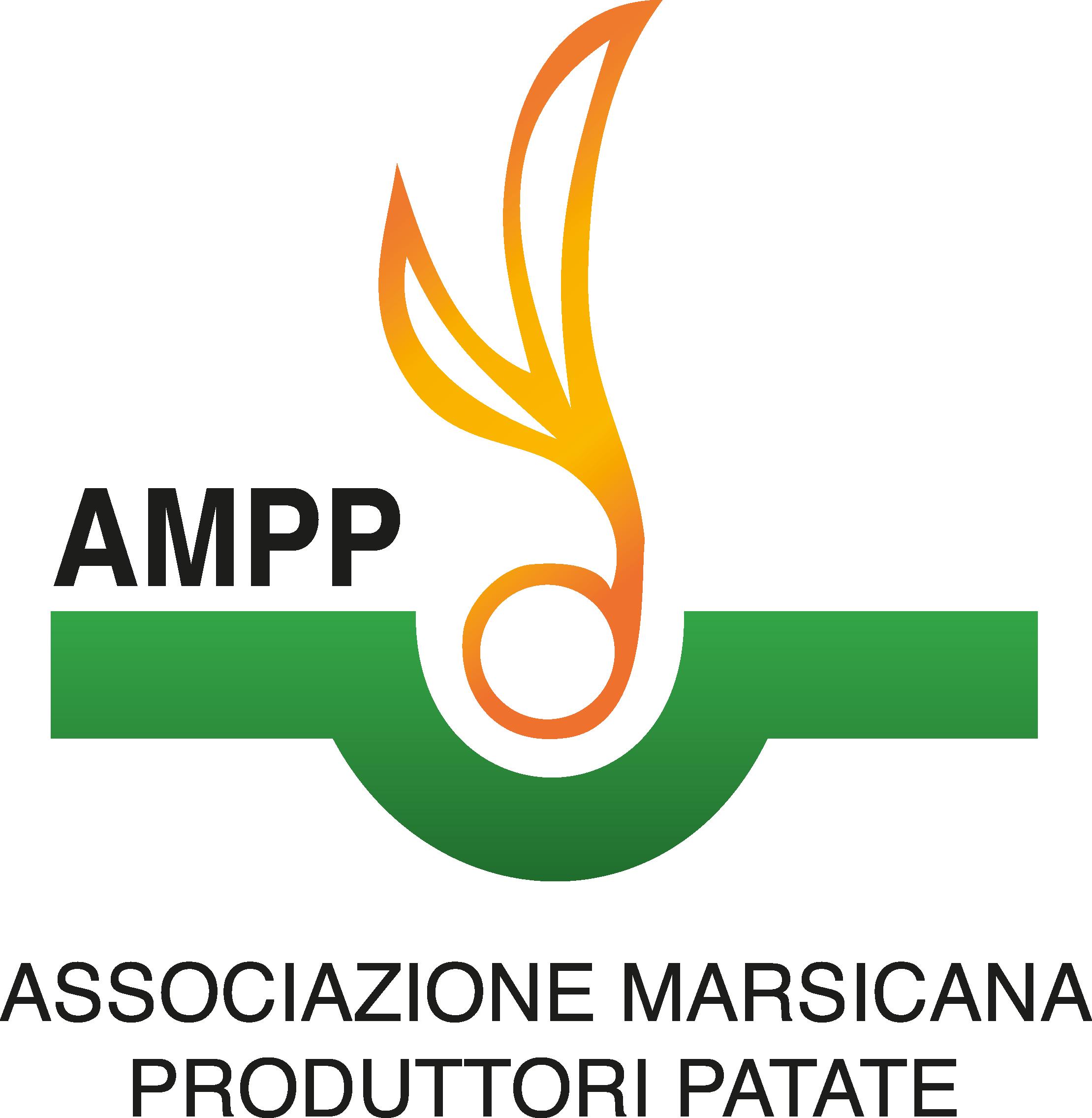 LOGO-AMPP.png